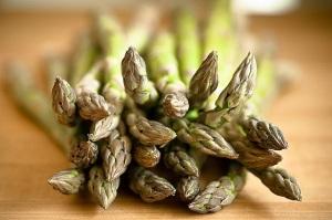 Asparagus_kirkclimber