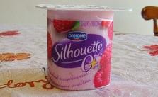 Yogurt_sugar free_V Yang