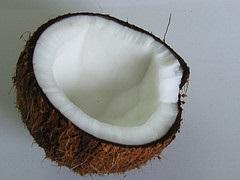 Coconut_Chandrika Nair