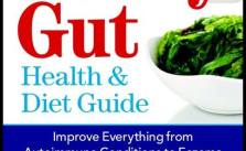 Leaky Gut Cover