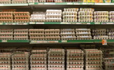 Eggs_Shopping