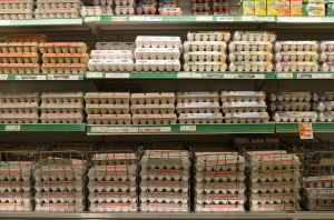 Eggs_Shopping