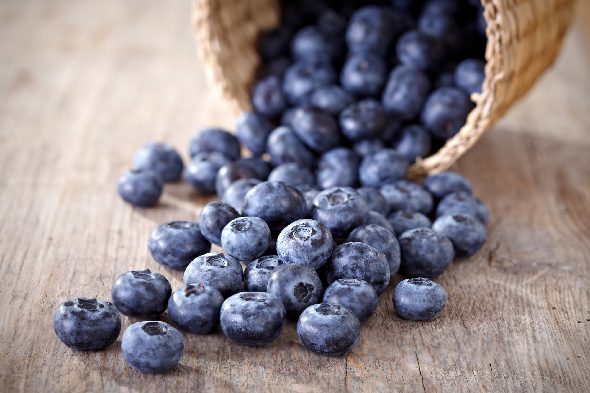 Blueberries - Do Antioxidants Impact Athletic Training?