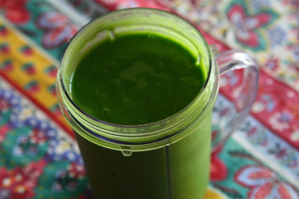 Green smoothie Nora Kuby - Is Your Obsession With Green Smoothies Ruining Your Metabolism?