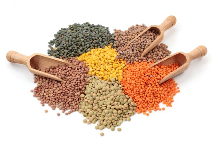 Lentils medical news - Getting enough protein. Is it all about timing?