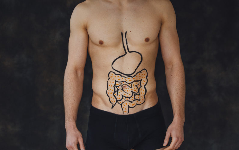Digestive tract - by Doug Cook RD