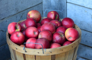Bushel of pectin and prebiotic rich red apples