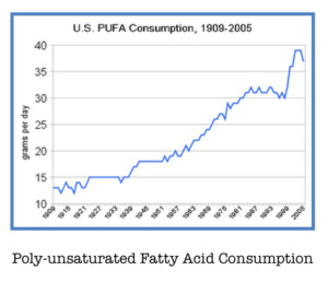 Consumption of polyunsaturated fat over the past decades