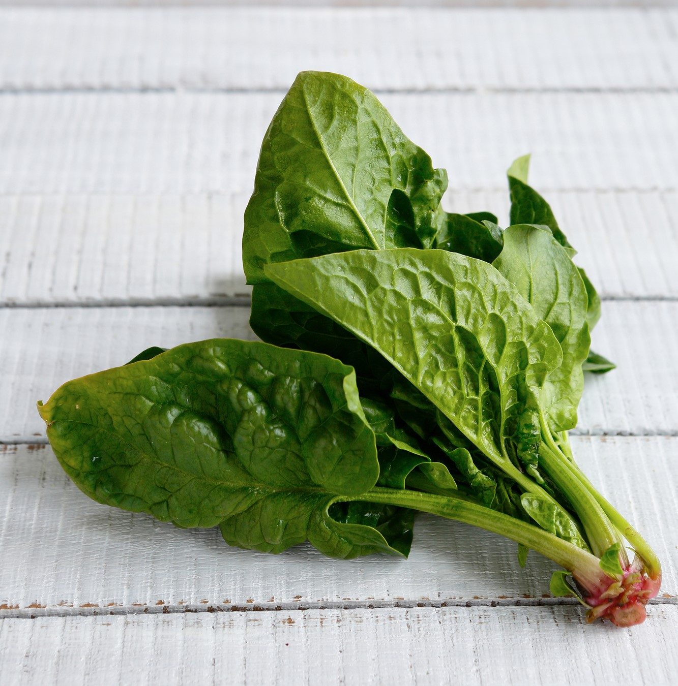 Fresh spinach leaves on a, white table