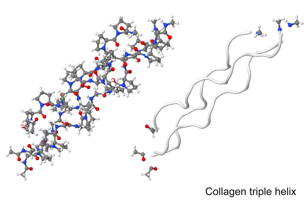Collagen molecule structure - by Doug Cook RD