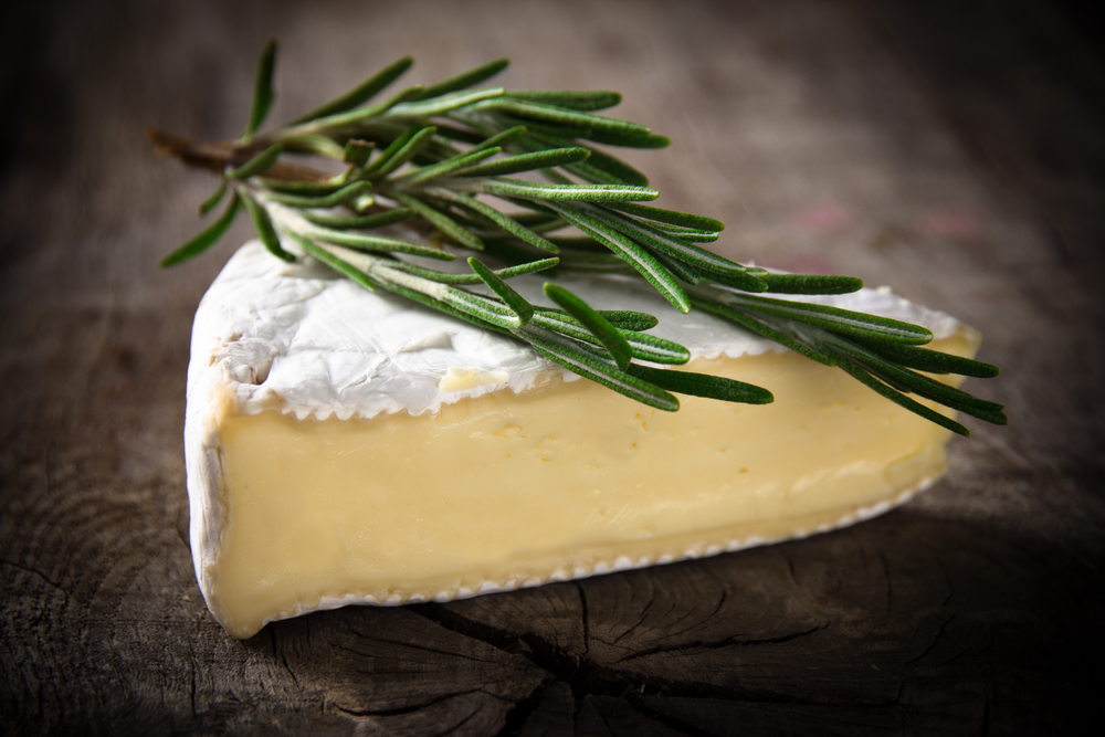 Brie cheese on a table with a sprig of rosemary