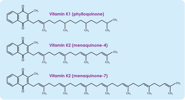 Different forms of vitamin K molecular structures