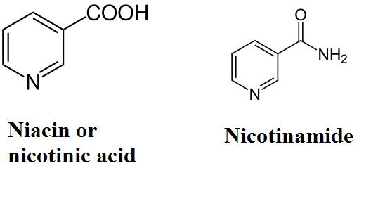 Niacin and nicotinamide - Nicotinamide Riboside. The Next Longevity Darling?