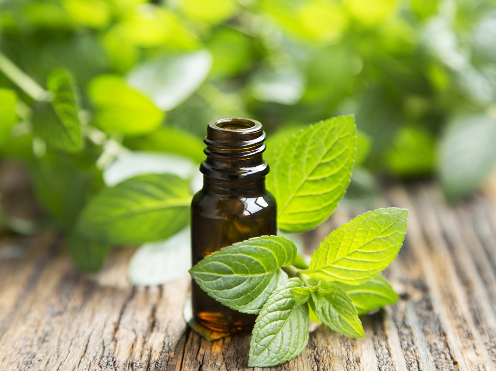 Mint leaves and essential oils - 7 Tips For Thanksgiving Digestive Health