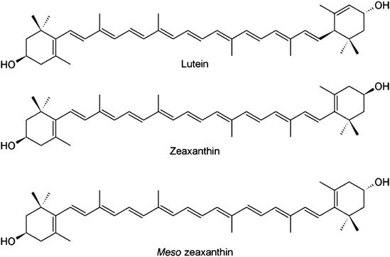 LZM - Lutein and Zeaxanthin. Friends You Definitely Want.
