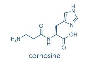 Carnosine 300x209 - Carnosine. A Potent Anti-glycation Ally?